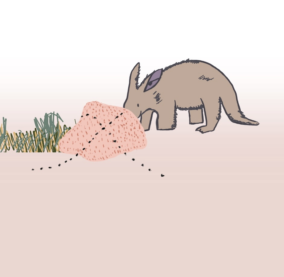 Aardvark on a ant hill